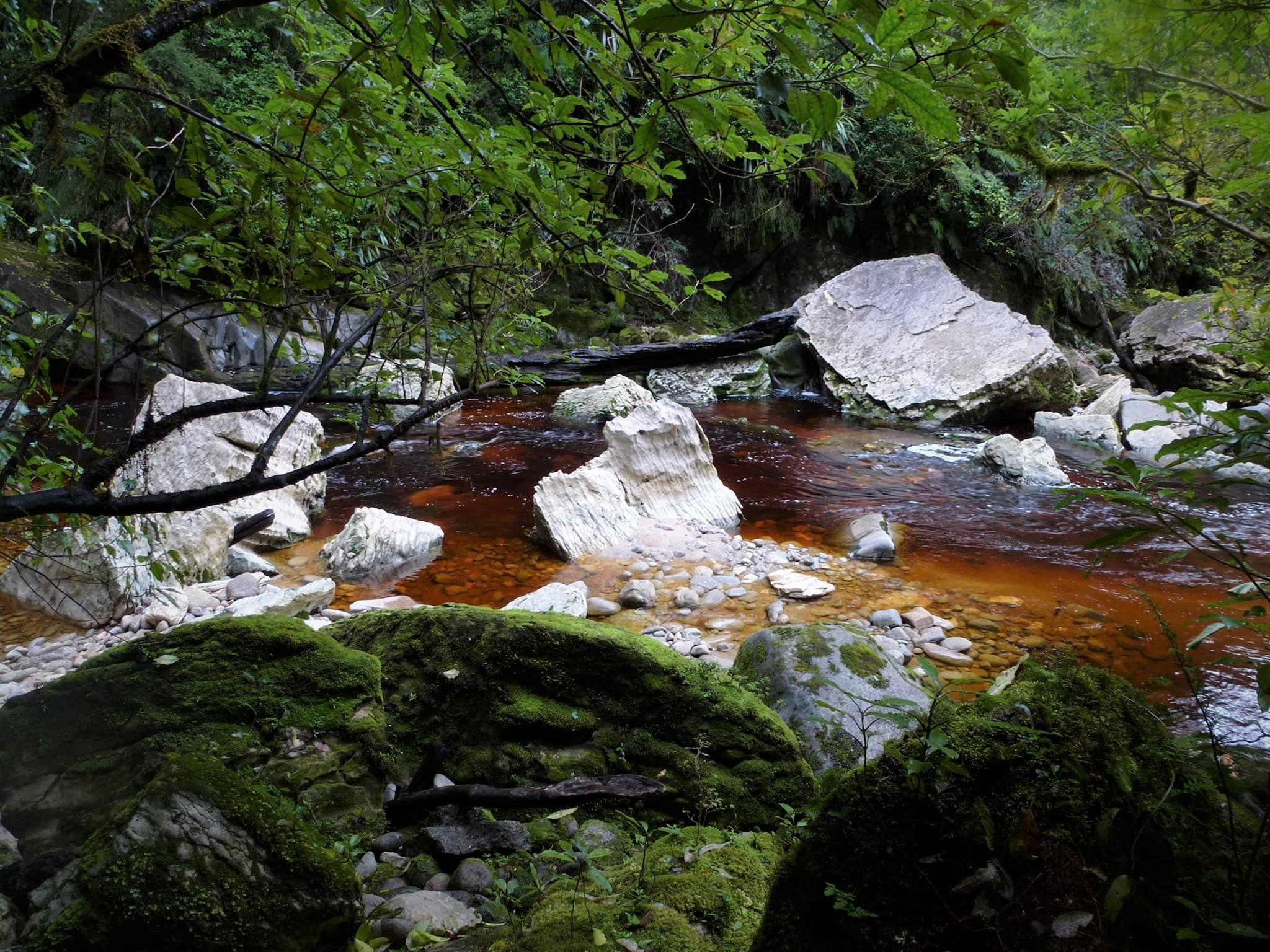 ニュージーランド旅ブログ・真冬の6週間縦断⑩【カラメアとオパララ】