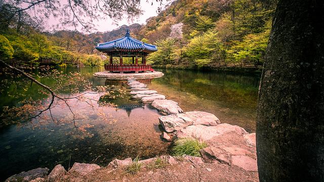 【韓国/留学】社会人におススメの短期 語学留学