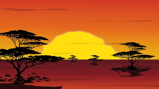 【ランキング】アフリカ旅行サファリはこの3カ国!