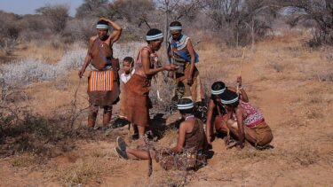 ボツワナ旅行に必要な費用と観光まとめ