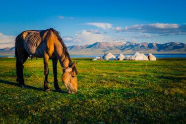 キルギス観光の必要日数|観光地&絶景9選【所要時間】